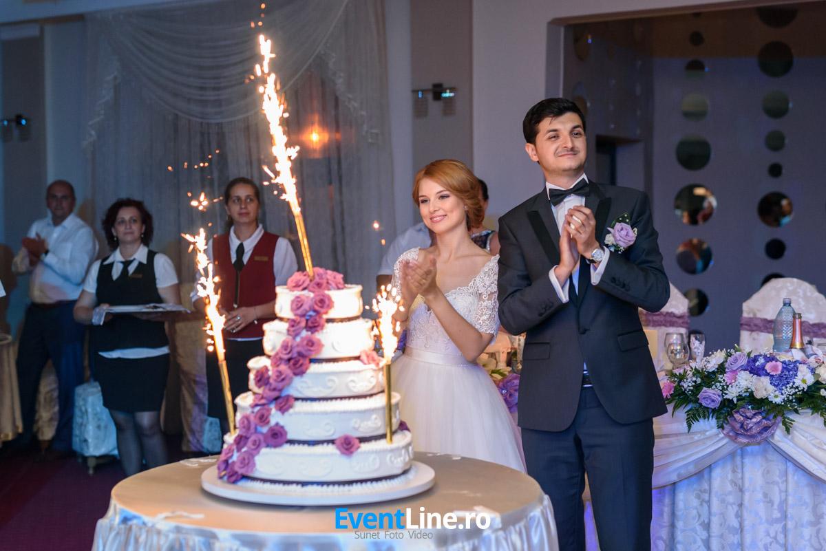 stefan si anita filmare fotograf nunta satu mare 62