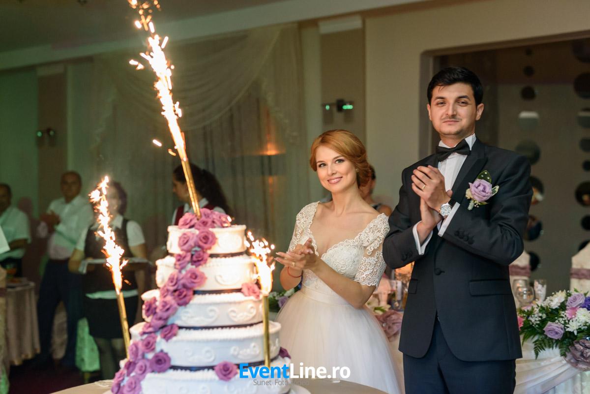 stefan si anita filmare fotograf nunta satu mare 63