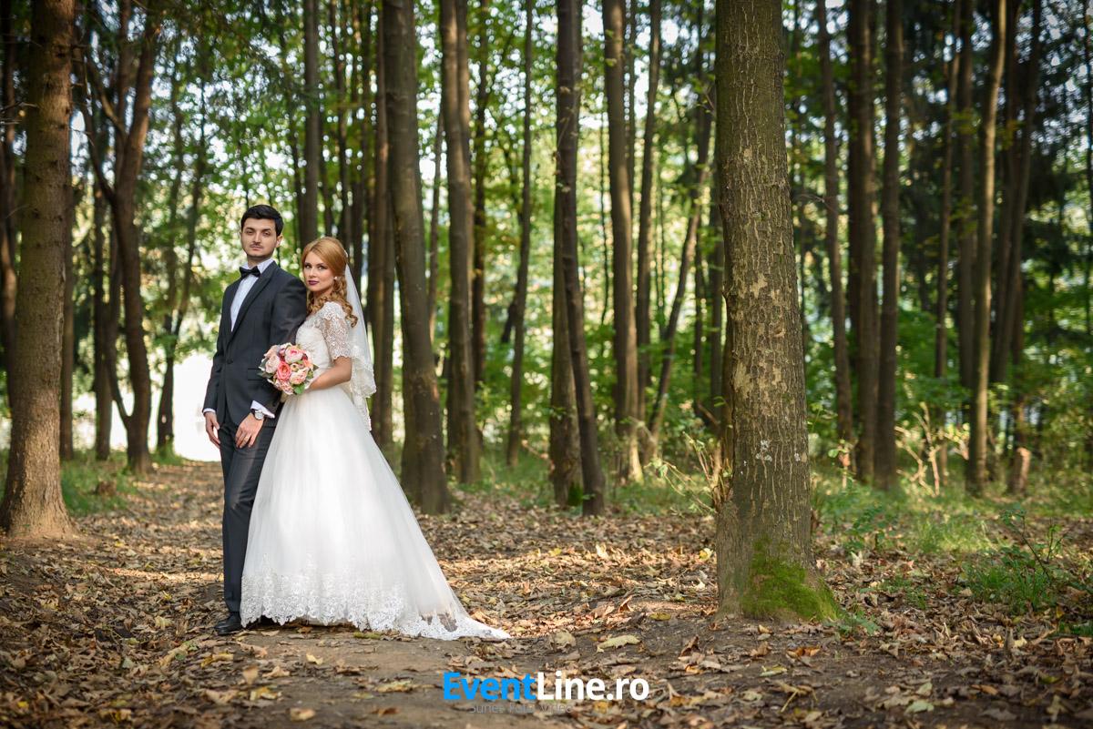 stefan si anita filmare fotograf nunta satu mare 85
