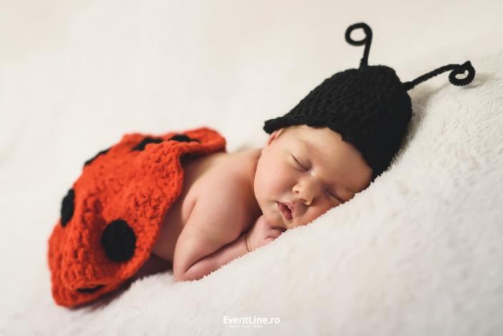 Foto nou nascut Baia Mare, Satu Mare newborn 02