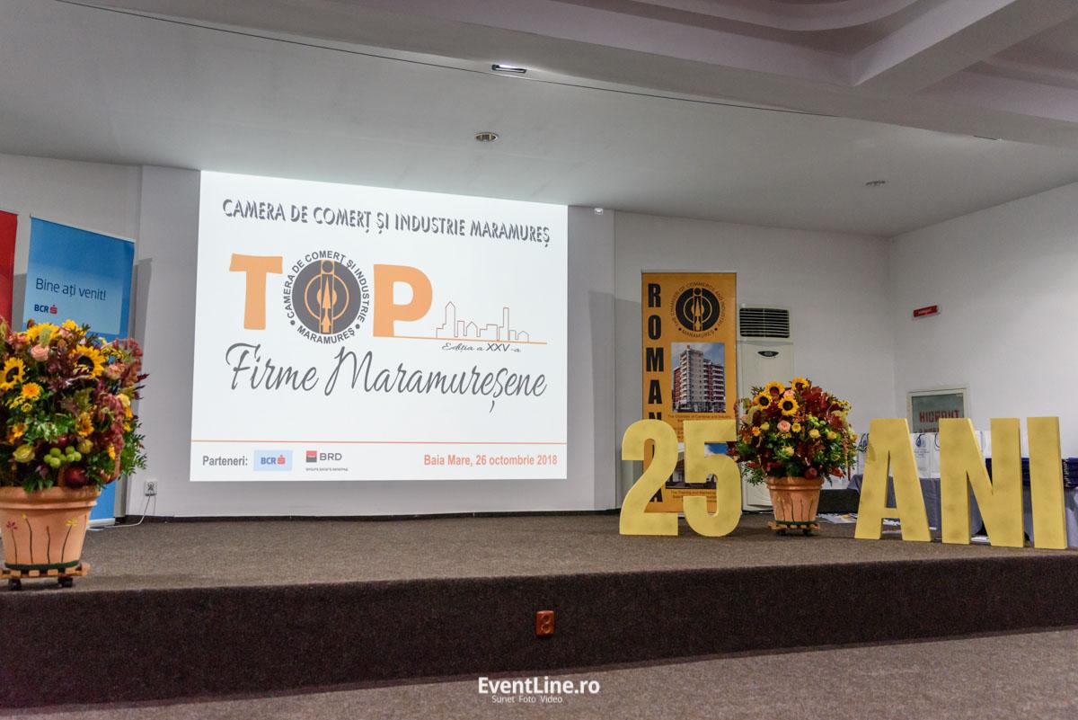 Topul firmelor maramuresene 2018 8